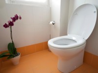 9 steps to install a new toilet without calling a plumber