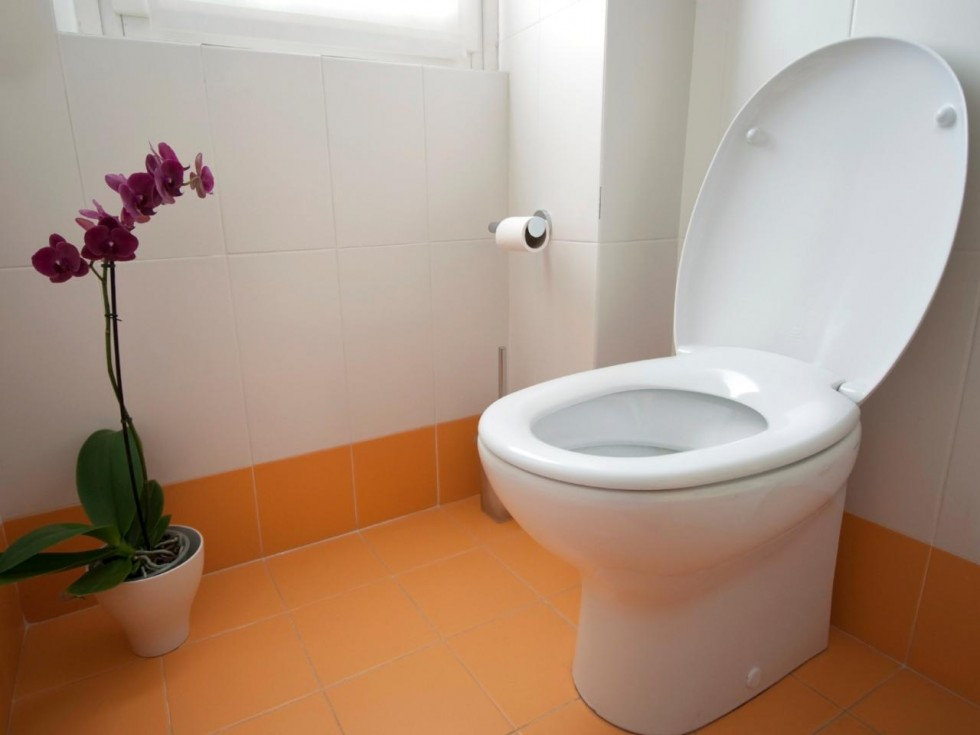 How Install New Toilet