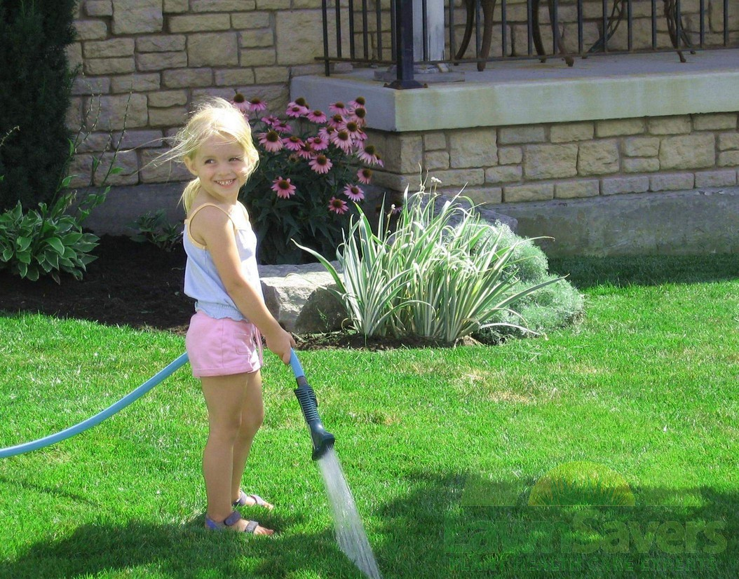 How to care for a lawn - HireRush Blog