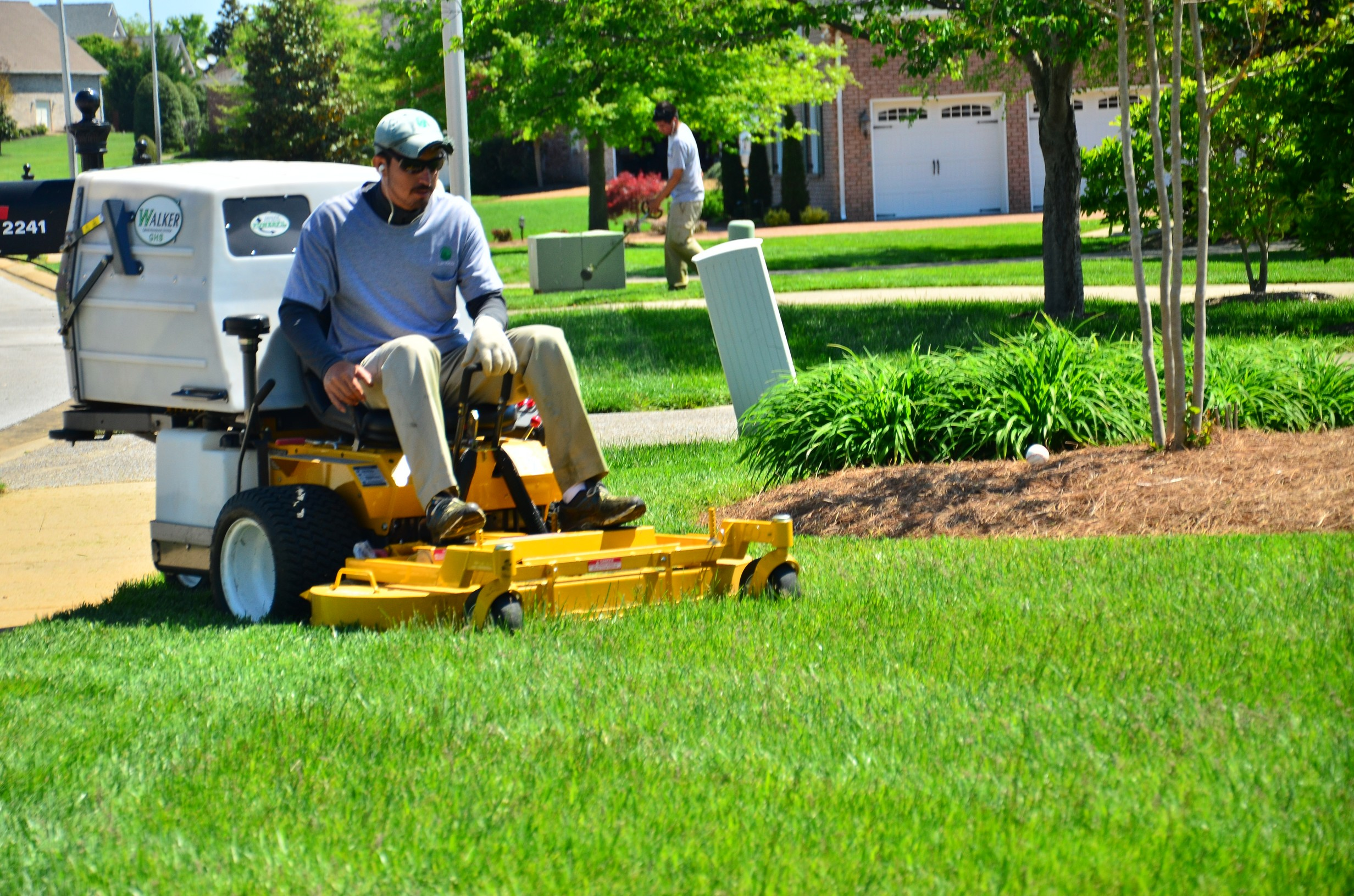 How to care for a lawn hirerush blog for Lawn mowing and garden maintenance