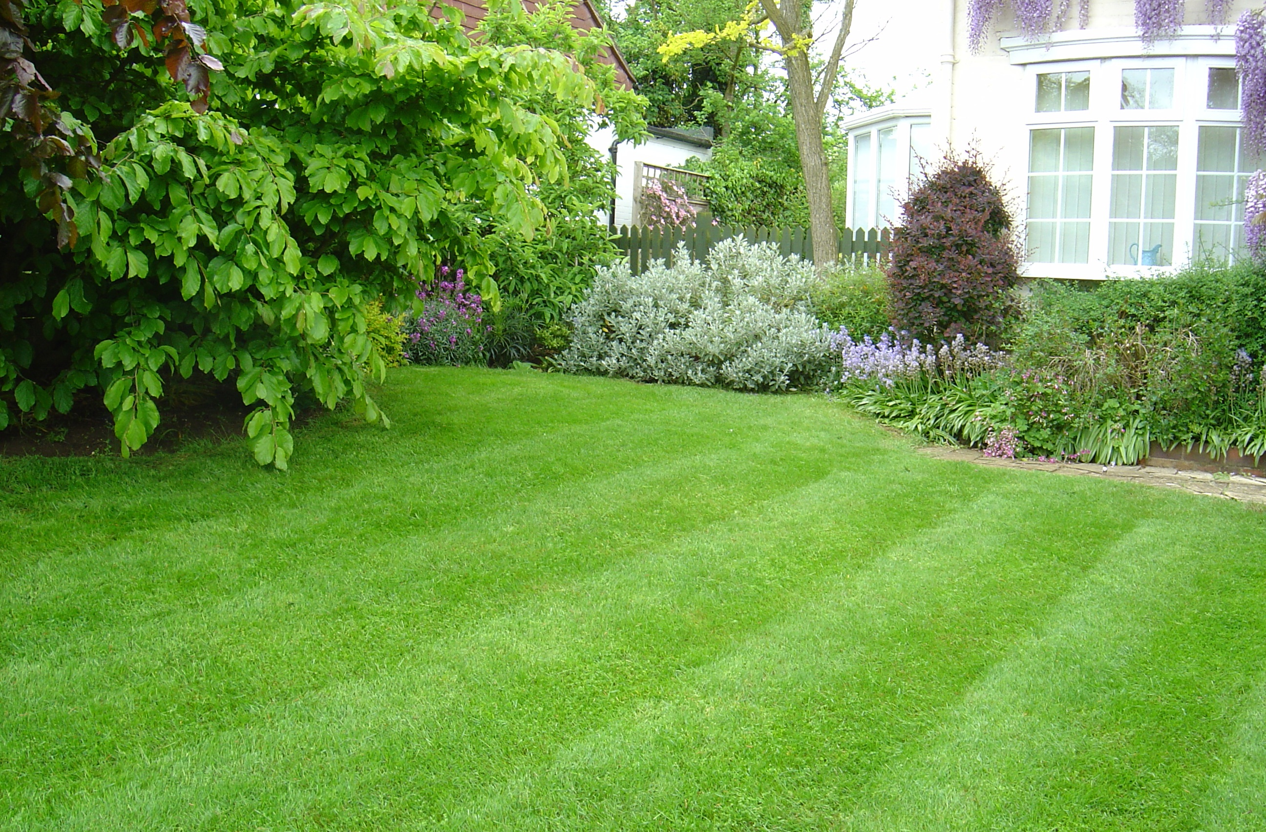 How to care for a lawn hirerush blog for Best grass for landscaping