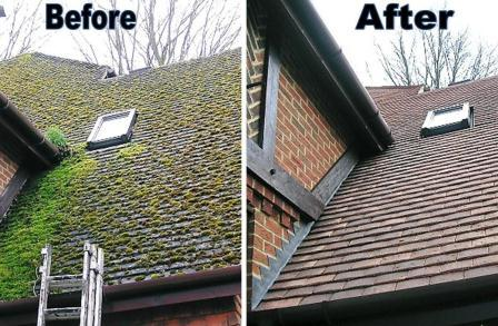 roof moss cleaning before and after & Roof cleaning and maintenance tips | HireRush Blog memphite.com