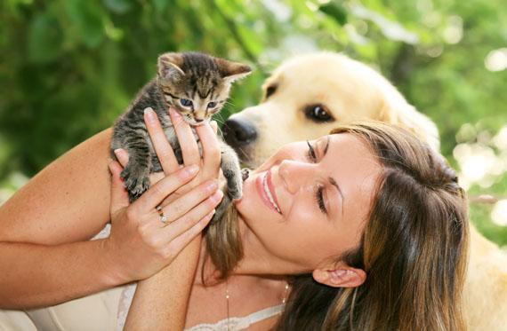 woman itroduducing a kitten to a dog