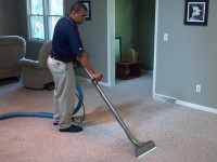 How to deep clean carpet like a pro