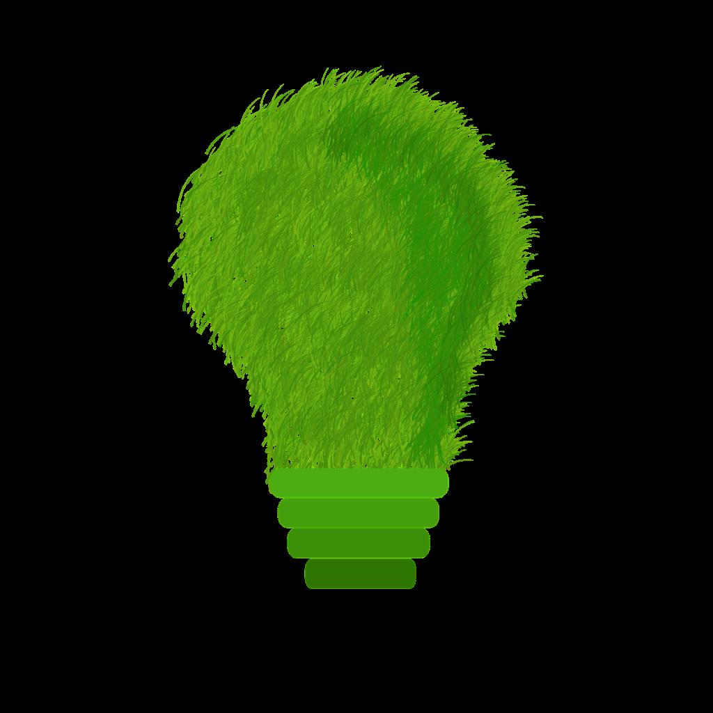 green-1966408_1920