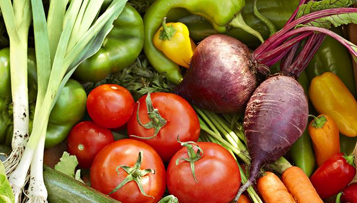 vegetable garden 2
