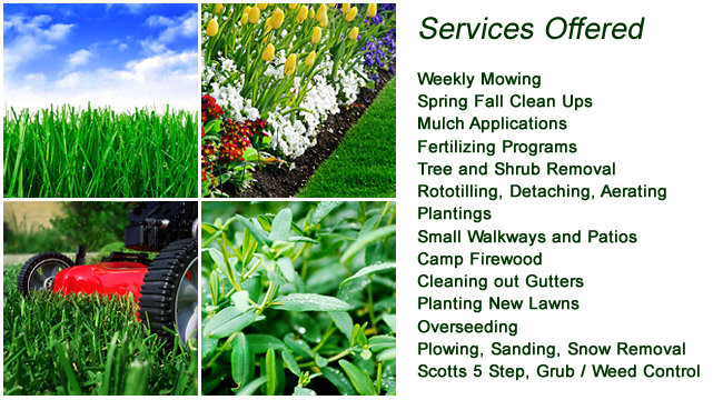 6 steps of how to start a lawn care business hirerush for Gardening and landscaping services