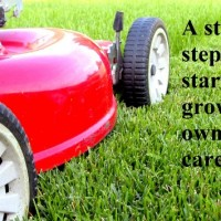 lawn care business lawn mower on grass