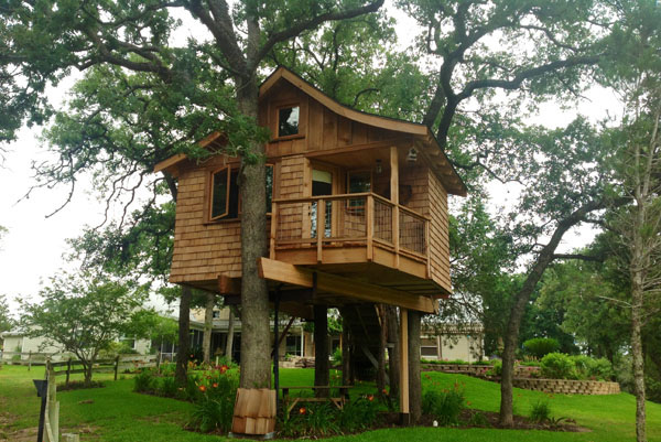 tree house between several trees