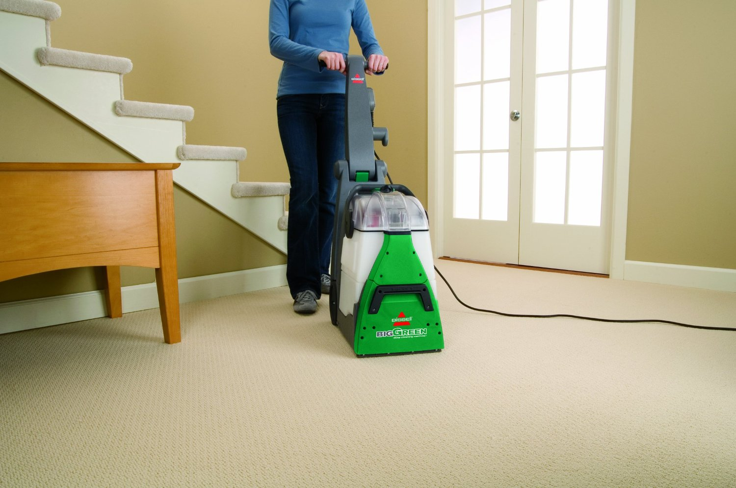 How To Remove Pet Stains From Carpet Hirerush Blog