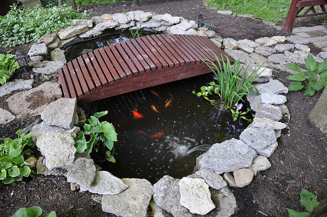 How to build a pond in your garden hirerush blog for How to build a small koi pond