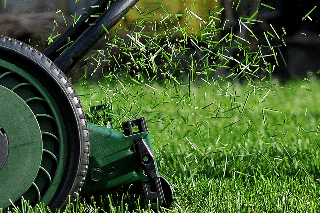 lawn mower throwing grass clippings back on lawn