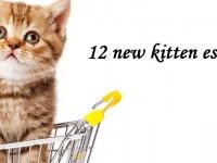 12 must-have new kitten supplies