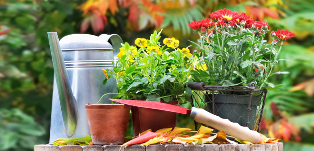 10 fall gardening tips and hacks HireRush Blog