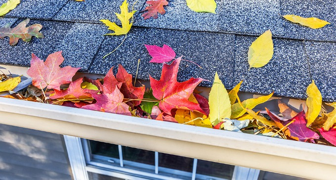 Fall Home Maintenance Tips top 5 home maintenance tips for fall | hirerush blog