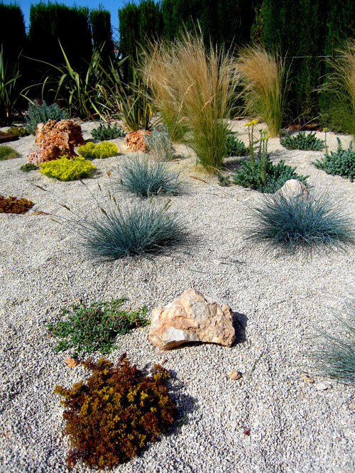 ... gravel with plants - Gravel Landscape: Pros Of Gravel For Landscaping HireRush Blog