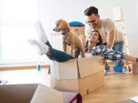Adulting or how to move out of your parents house