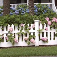 wood fence with flowers