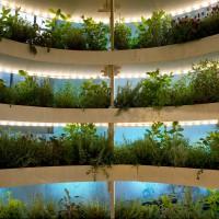 IKEA_today_the_growroom_garden_wall