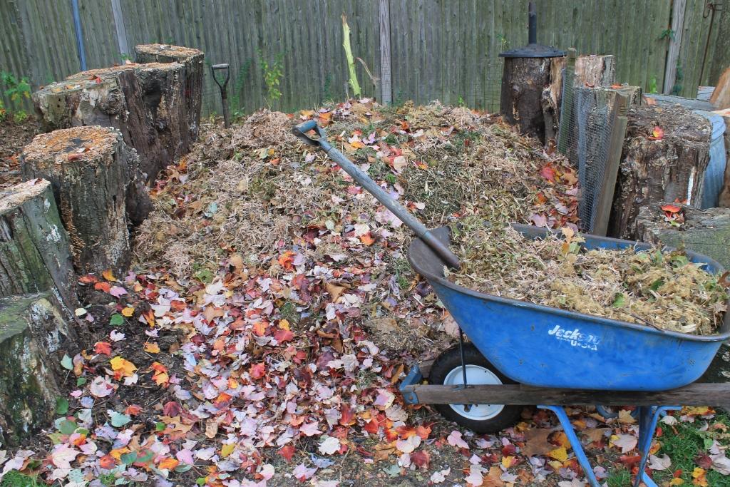 wheelbarrow near compost heap spring yad cleanup