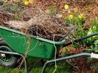 Ultimate spring yard clean up checklist