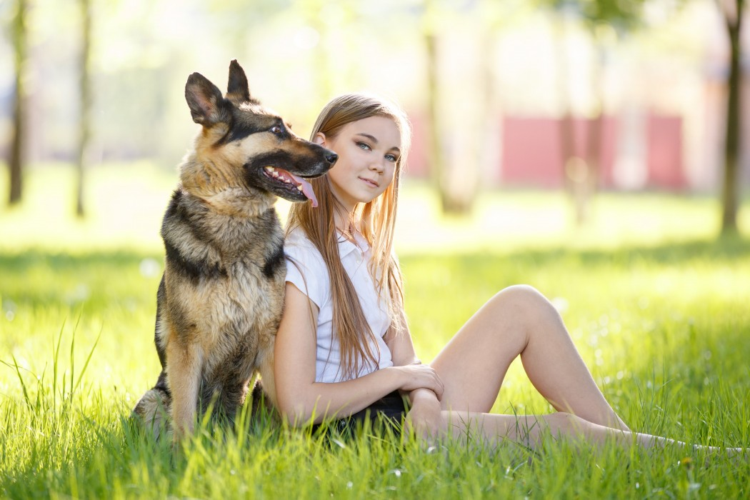 german shepherd on grass with female owner