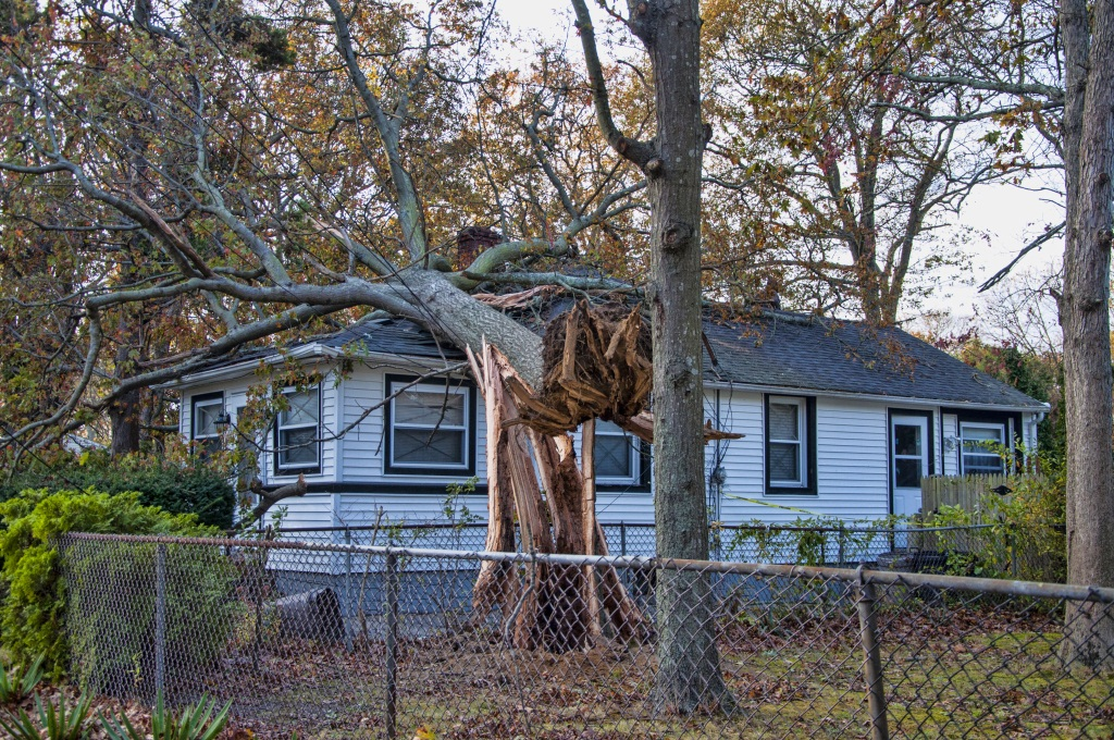 How To Hurricane Proof Your Home Hirerush Blog