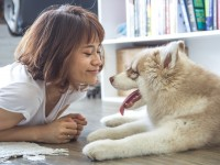 12 reasons to get a dog (when you have kids)