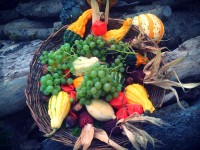 Easy-to-do ideas for Thanksgiving decorations