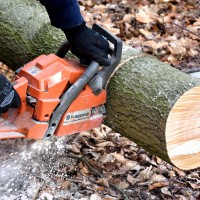 cutting-wood-2146507_1920