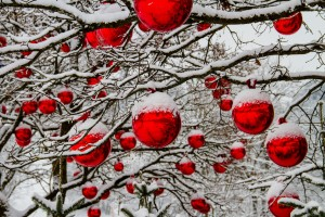 snow photography: contrasting objects