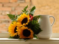 Kids and plants: most dangerous flowers for a baby shower