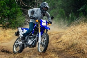 the fastest among motorcycles
