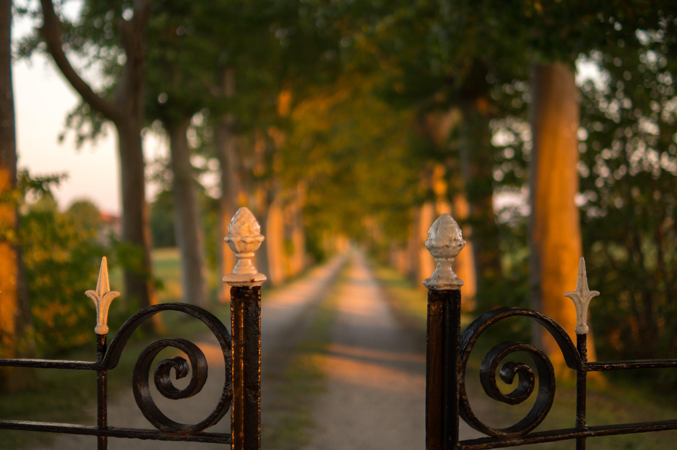 cast-iron fence