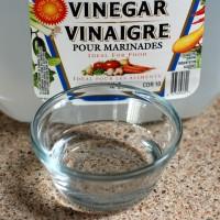 vinegar for mold removal