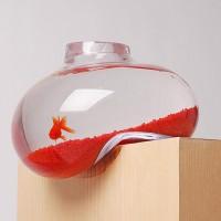 Liquid-aquarium