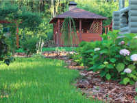Sun protection for plants: 3 basic ways