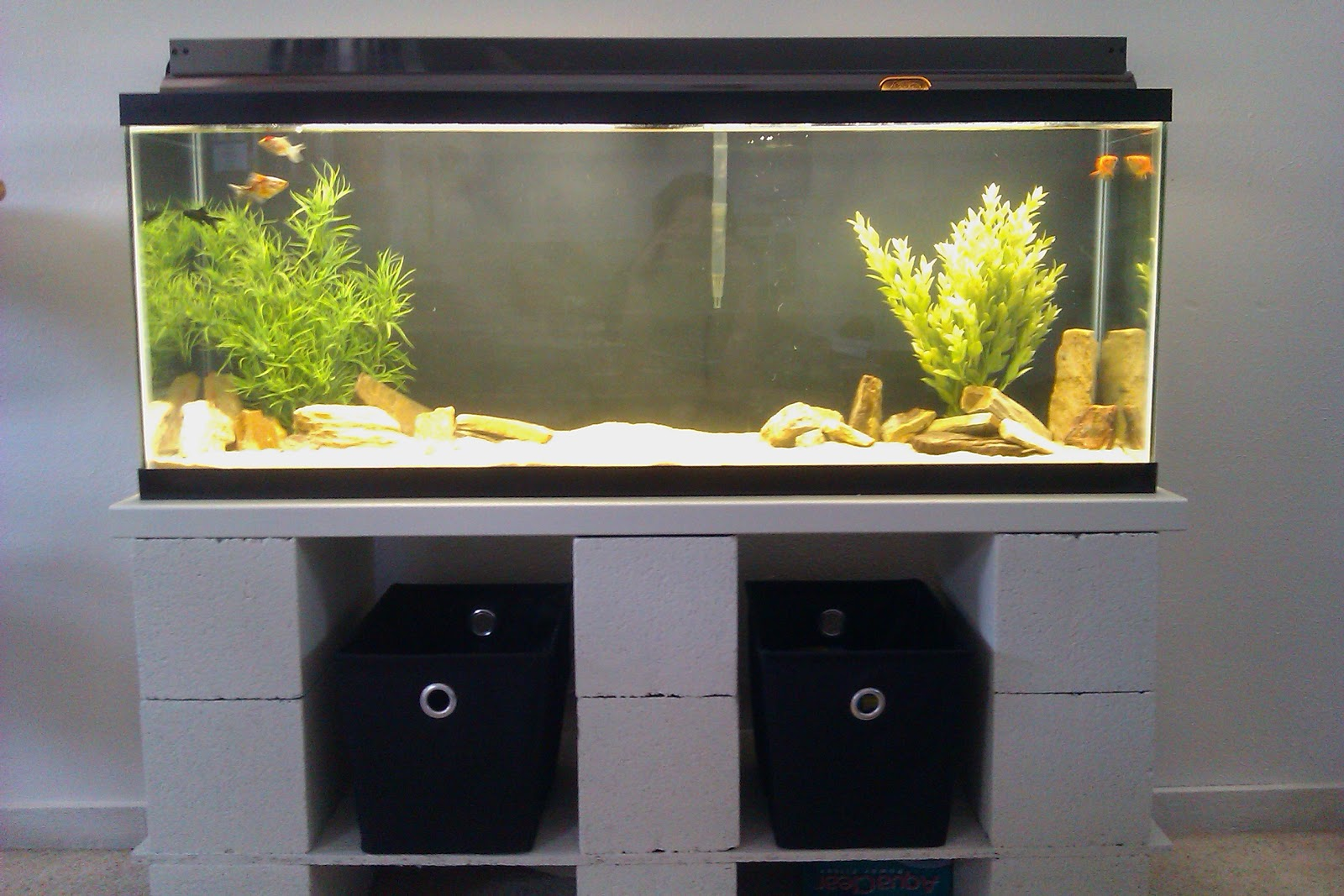 Aquarium Checklist Setting Up A Fish Tank Hirerush