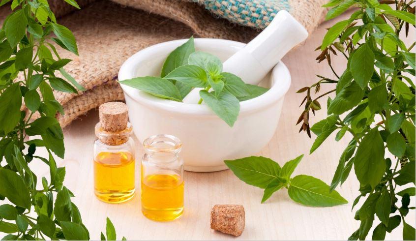 plants for skin