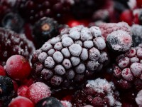 Nutritious Frozen Foods for Kids? Yes, It's Possible