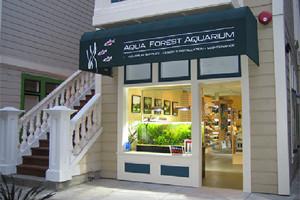 Logo Aqua Forest Aquarium