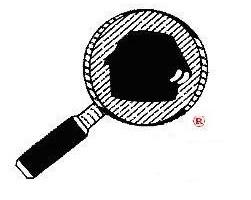 Logo Diverse Inspection Services