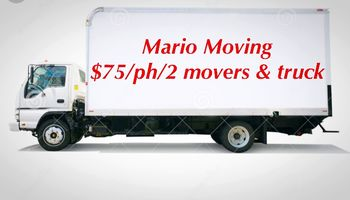 Logo Mario Moving