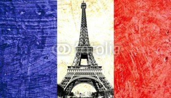 French Tutor for all types and levels(All NY)