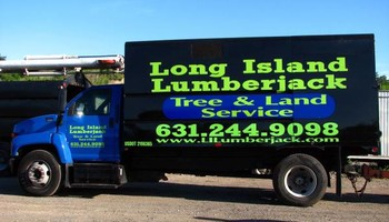 Tree And Land Clearing Services From Soup To Nuts