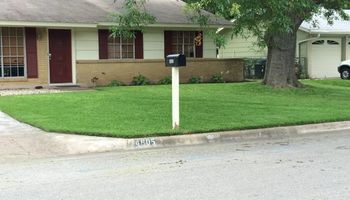 NEED MOWING???
