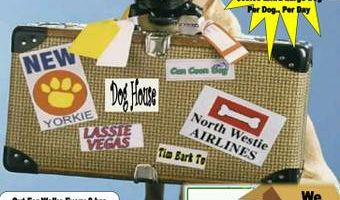 We offer boarding for dogs, cats, birds.