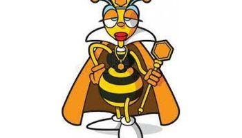 Pest control /Exterminating / Bedbugs