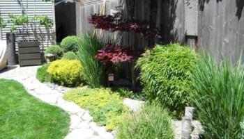 Landscaper Guy's. Landscape Design & Installation