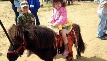 ABBY's Pony Rides